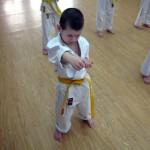 Okinawa karate Praha - karate děti