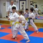 Okinawa karate Praha - děti