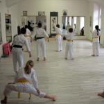 Okinawa karate Praha